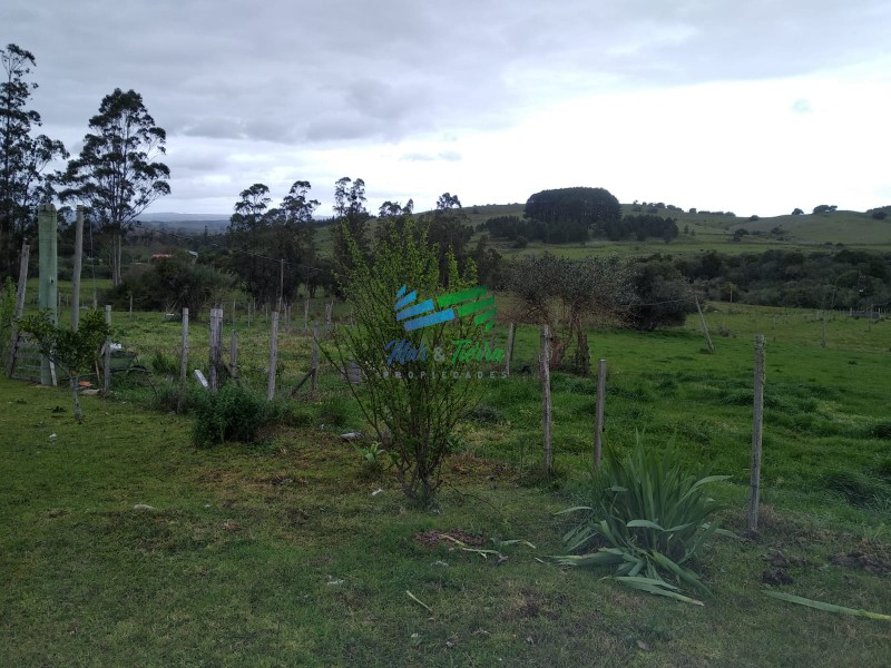 Vendo excelente chacra de 39 hectáreas para granja turística o tambo, Aigua, Punta del Este