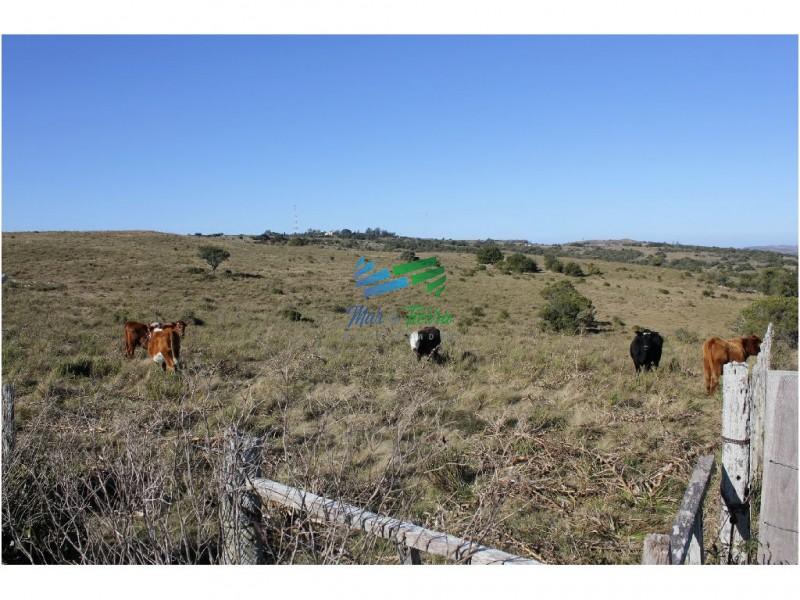 Chacra 5 has. sobre ruta 12, vista a las sierras, a 30 de Punta del Este.