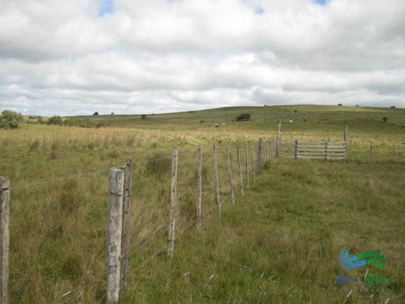 Fraccion de campo o chacra de 20 has. a 25 km de San Carlos