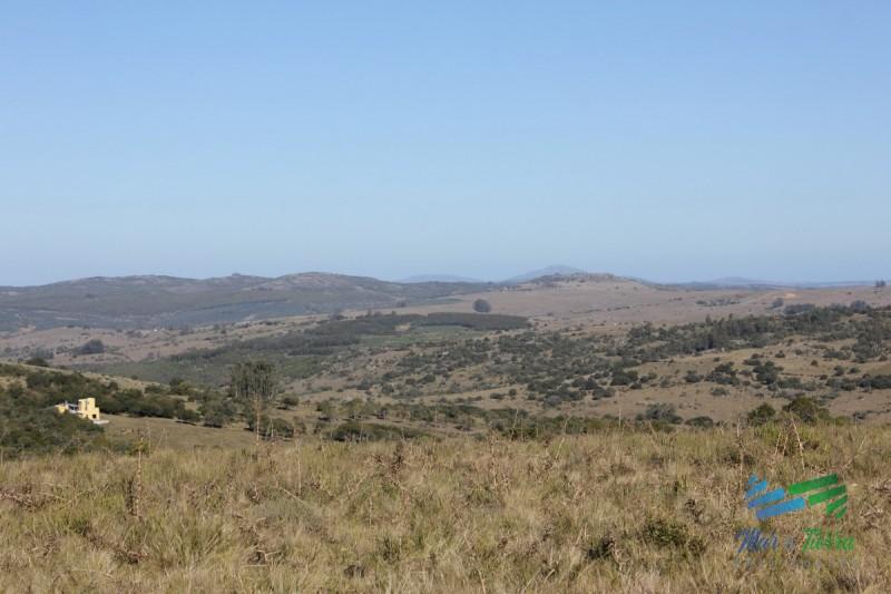 Chacra turistica de 5 has. esquinera sobre ruta 12 a 30´ de Punta del Este.