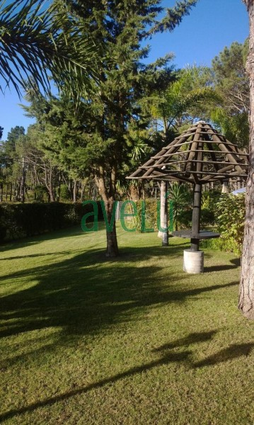 PUNTA DEL CHILENO  - Ref: 956.1