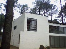 Linda casa Chihuahua
