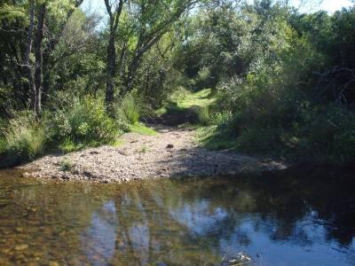 Campo 96 has en Carape cuenta con costa de arroyo.