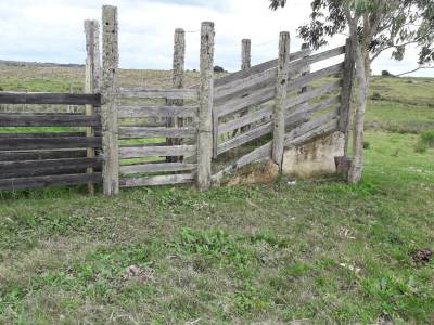 Campo en las Cañas de 59 has, cuenta con casa, luz, instrucciones para trabajar con ganado, arroyo, cañada y monte natural. Consulte!!!!!