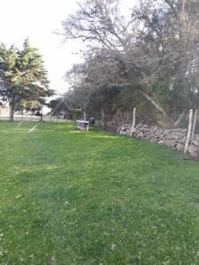 Campo 57 has - Agricola Ganadero en Minas! muy bueno!