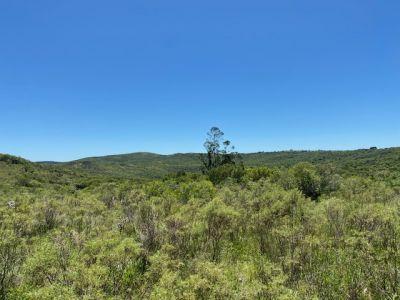 campo con casa, tajamar monte natural muy cerca de aigua consulte. - col1552p