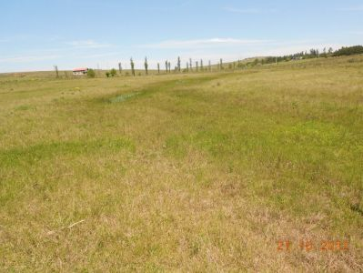 campo de 5 has y media muy cerca de pueblo eden - col998p