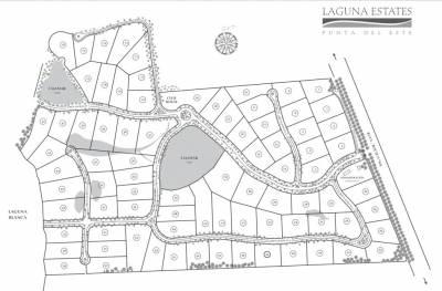 Terreno de 5500 m2 en LAGUNA STATES MANANTIALES