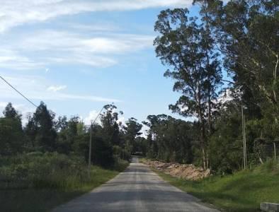 5 terrenos linderos se venden por separado en Rincon del Indio de 1067 m2 cada uno. Se puede construir PH. Consulte!!!!!!!!!