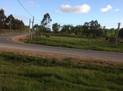 Terreno camino Eguzquiza muy buena ubicacion cerca de San Carlos y de la ruta 104.