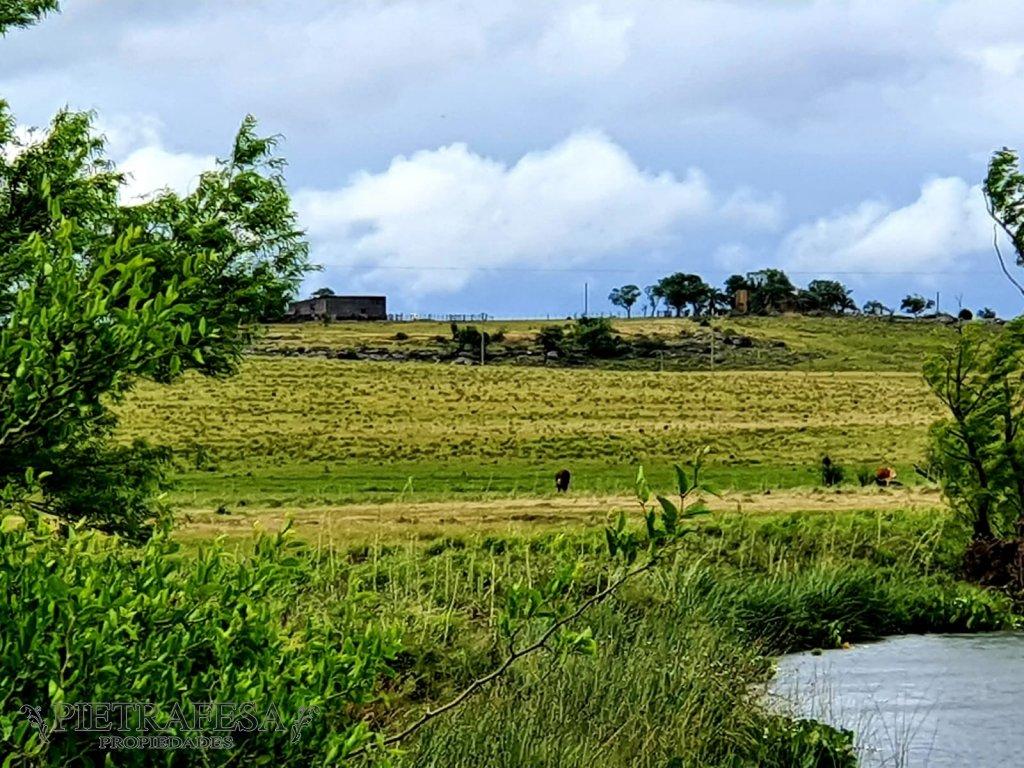 Campo Ref.1867 - 2 Campos en Durazno a 120 km de la ciudad