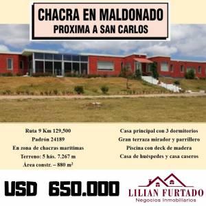 Chacra Maldonado