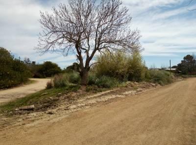 Terreno 1024 m2 , en El Tesoro - La Barra