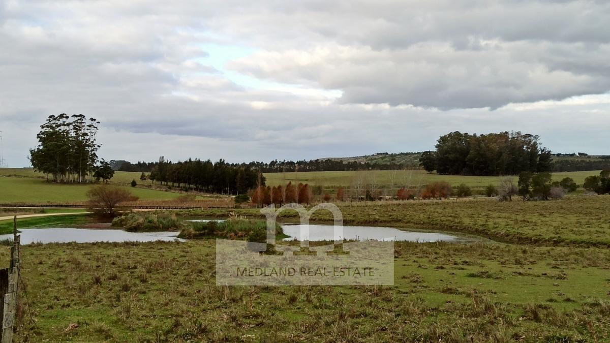 Campo Ref.214 - Venta de Excelente Campo - Chacra Maritima - La Barra - Punta del Este