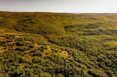 Chacra en las Sierras de Maldonado