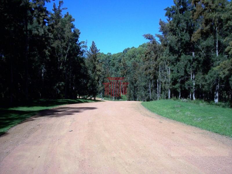 OPORTUNIDAD CHACRA MARÍTIMA - 800 MTS DEL MAR