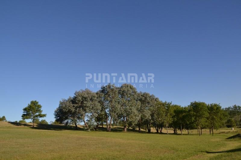 Terreno ID.211431 - Terreno en Punta Ballena, Punta Ballena | Puntamar Inmobiliaria Ref:211431