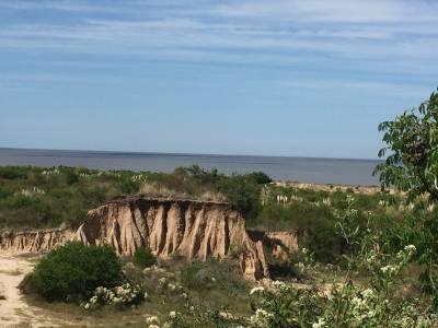 OPORTUNIDAD CHACRAS DE 5 HAS EN, 100 M DE COSTA SOBRE EL RIO DE LA PLATA
