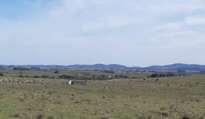 Venta Chacra en Uruguay, Maldonado, a 43 km de Punta del Este!