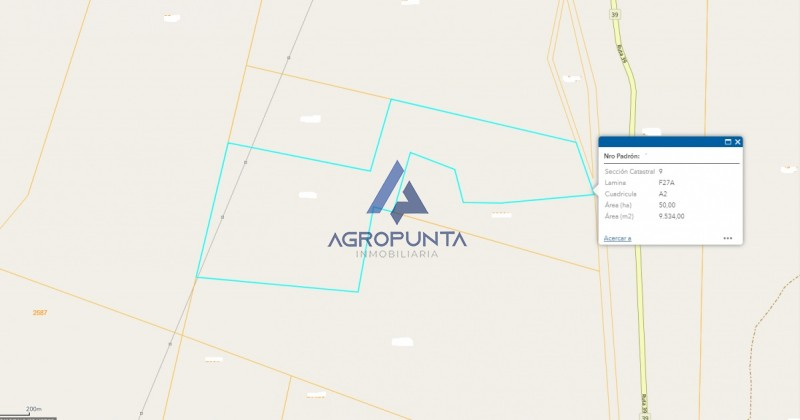 Chacra sobre ruta 39 * 50 hectáreas