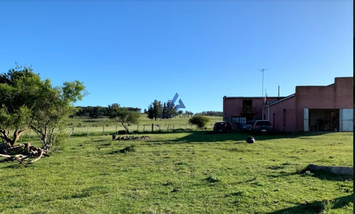 Campo ruta 39, 35 hec