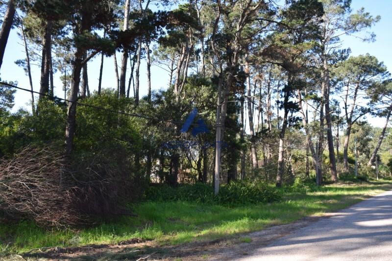 Terreno en Punta del Este, Pinares   AgroPunta Inmobiliaria Ref:4914
